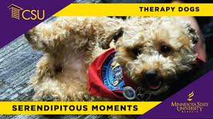 HOUND HUGS & KANINE KISSES: Therapy Dogs Return Jan. 16