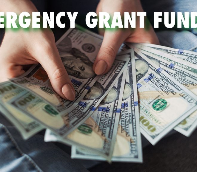 Emergency Grant Requests Up Due to COVID-19