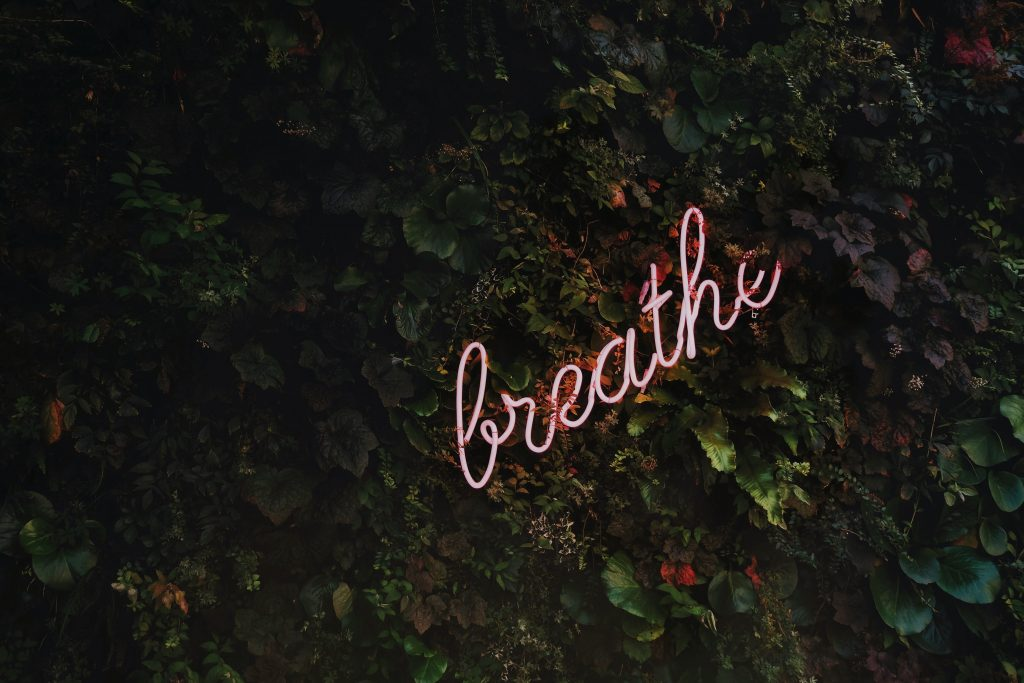 "pink neon handwritten word ""breathe' against a background of ivy leaves as a symbol of calm and introspection."